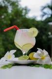De drank van de citroencocktail Royalty-vrije Stock Foto