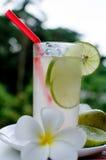 De drank van de citroencocktail Stock Fotografie
