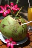 De drank van de kokosnoot Royalty-vrije Stock Foto's