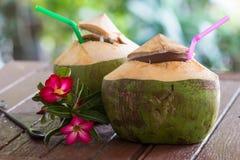 De drank van het kokosnotenwater royalty-vrije stock afbeeldingen