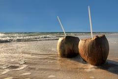 De dranken van de kokosnoot Stock Afbeelding