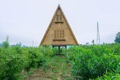 De driehoeks houten bouw in boomgaard stock afbeelding