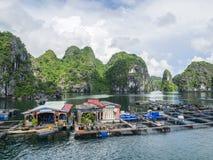 De drijvende baai van het visserijdorp halong Stock Fotografie
