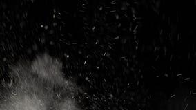 De drijvende witte vlekken van stof zijn schitterend op zwarte achtergrond stock videobeelden
