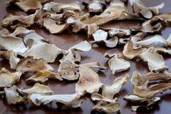 De droge boleetpaddestoel snijdt voedsel achtergrondtextuur Royalty-vrije Stock Foto