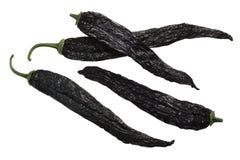 De droge Pasilla-peper van Chili van bajiochilaca Royalty-vrije Stock Fotografie