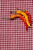 De droge Peper van de Spaanse peper Stock Afbeeldingen