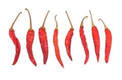 De droge Peper van de Spaanse peper Stock Foto