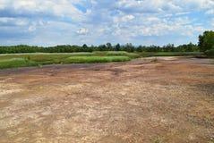 De droge riem van het land met een groene weide en bos op achtergrond, n Royalty-vrije Stock Afbeeldingen