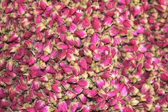 De droge roze rozen worden gebruikt voor thee en voor medische doeleinden Stock Afbeeldingen
