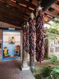 De droge Spaanse peperpeulen hangen op stralen in de binnenplaats van Tohono Chul Park, Tucson royalty-vrije stock foto