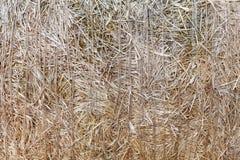 De droge textuur van de stroclose-up De landbouwachtergrond Royalty-vrije Stock Foto's