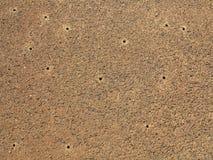 De droge textuur van de vuilgrond Royalty-vrije Stock Foto's