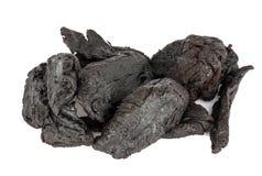 De droge Wortel van Shu Di Huang of van Rehmannia Glutinosa Royalty-vrije Stock Foto's