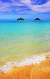 De dromen van het strand Stock Afbeeldingen