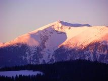 De Droom van de winter Royalty-vrije Stock Afbeeldingen