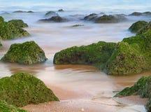 De droom van het strand Stock Afbeeldingen