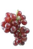 De druif isoleert op witte achtergrond Royalty-vrije Stock Afbeeldingen