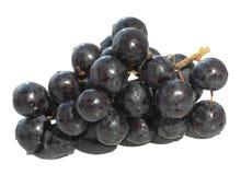 De druif van de wijnstok Stock Foto