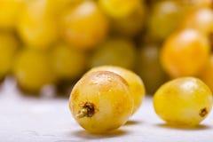 De Druiven van de bos Royalty-vrije Stock Foto