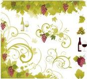 De druivenelementen van de wijn Royalty-vrije Stock Foto's
