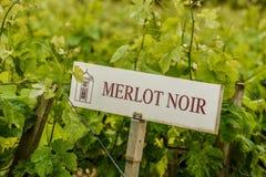 De Druivenidentificatie van het wijngaardteken stock fotografie