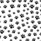 De drukken van de hondvoet Royalty-vrije Stock Afbeeldingen