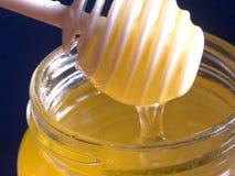 De druppel van de honing Stock Foto
