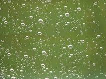 De druppeltjes van de regen Royalty-vrije Stock Foto