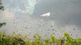 De druppeltjes van het regenwater Stock Foto's