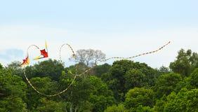 De dubbele Vlieger van de Stunt met lange staart die trucs uitvoert Stock Afbeeldingen