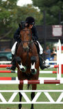 De duidelijke sprong van Showjumper en van het paard Stock Fotografie