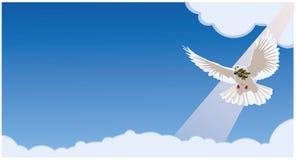 De duif draagt een olijftak Horizontale blauwe achtergrond Royalty-vrije Stock Afbeelding