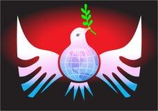 De duif van de vrede Stock Foto