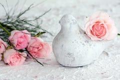De Duif van de vrede met Roze Rozen Stock Foto's