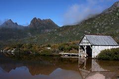 De Duif van het meer stock afbeeldingen