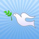 De duif van Pasen met groen blad Stock Afbeeldingen