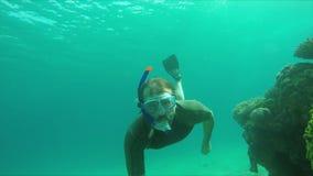 De duiker zwemt over een koraalrif in het zonlicht stock video