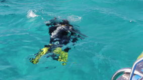 De duikers in aqualong treffen te duiken voorbereidingen stock video