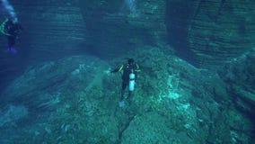 De duikers in Gr Boilier schommelen dichtbij Sanbenedicto-eiland van Revillagigedo-Archipel stock videobeelden