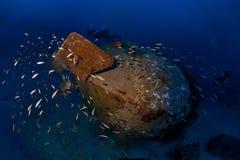 De duikers van Trimix onderzoeken diep wrak Colona IV op 65 m Royalty-vrije Stock Foto