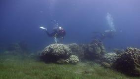 De duikers zwemmen op achtergrond van koralen onderwater in oceaan van het wild Filippijnen stock video