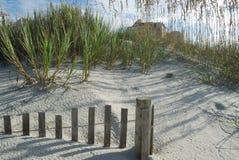 De duinen overzeese van het zand haver en omheining Stock Foto's