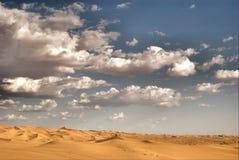 De duinen van Californië stock foto's