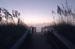 De duinen van de Kust #1 Stock Foto's