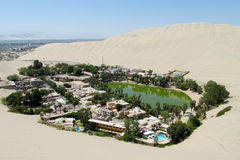 De duinen van de zandwoestijn en groene oase stock fotografie