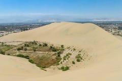 De duinen van de zandwoestijn en groene oase stock foto