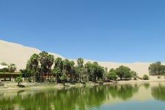 De duinen van de zandwoestijn en groene oase met meer royalty-vrije stock afbeelding