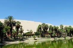 De duinen van de zandwoestijn en groene oase met meer stock foto