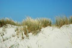 De duinen van de zomer Stock Afbeelding